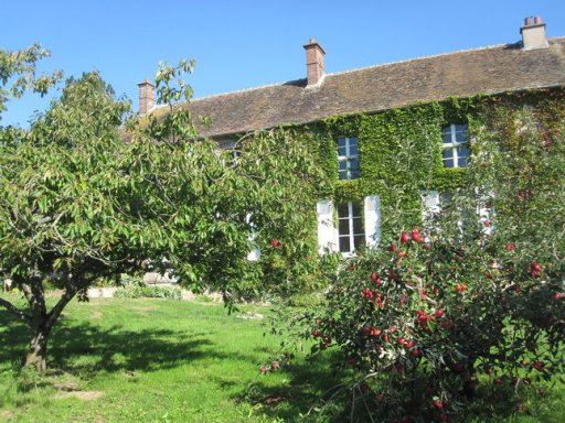 Garden - apple blossoms - rent a house - France